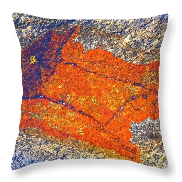Orange lichen Throw Pillow by Heiko Koehrer-Wagner