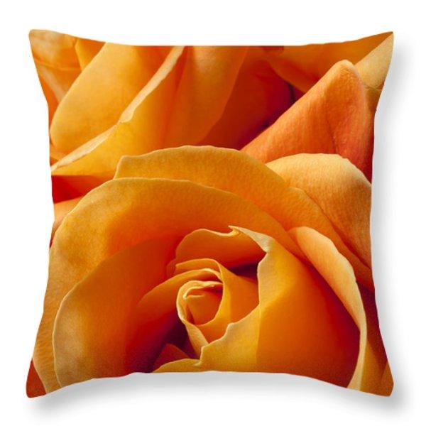 Orange Roses Throw Pillow by Garry Gay