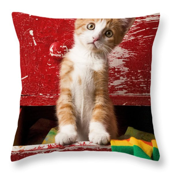 Orange tabby kitten in red drawer  Throw Pillow by Garry Gay