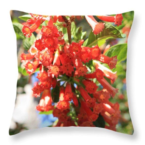 Orange Trumpet Flower Throw Pillow by Carol Groenen