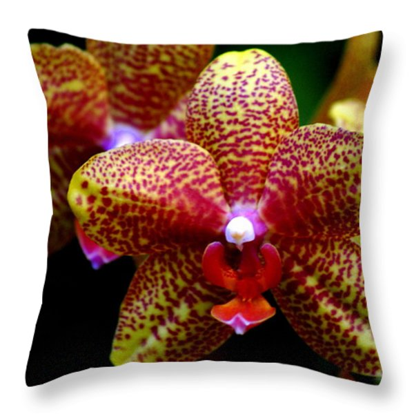 Orchid 15 Throw Pillow by Marty Koch