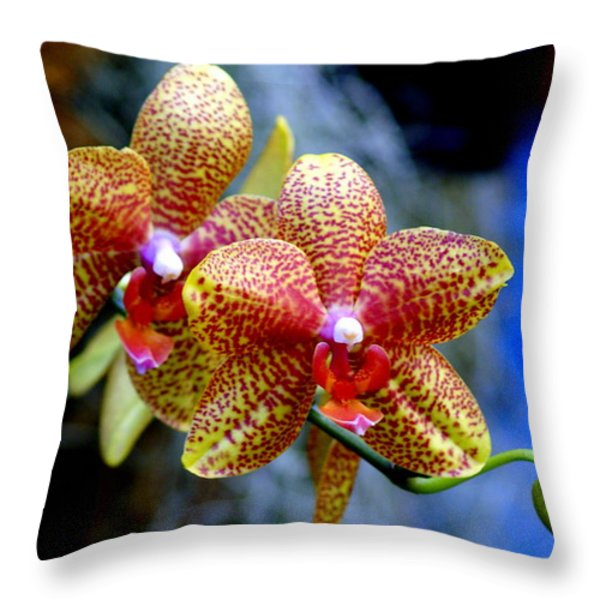 Orchid 17 Throw Pillow by Marty Koch