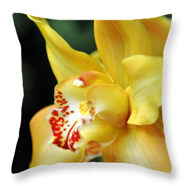 Orchid 24 Throw Pillow by Marty Koch