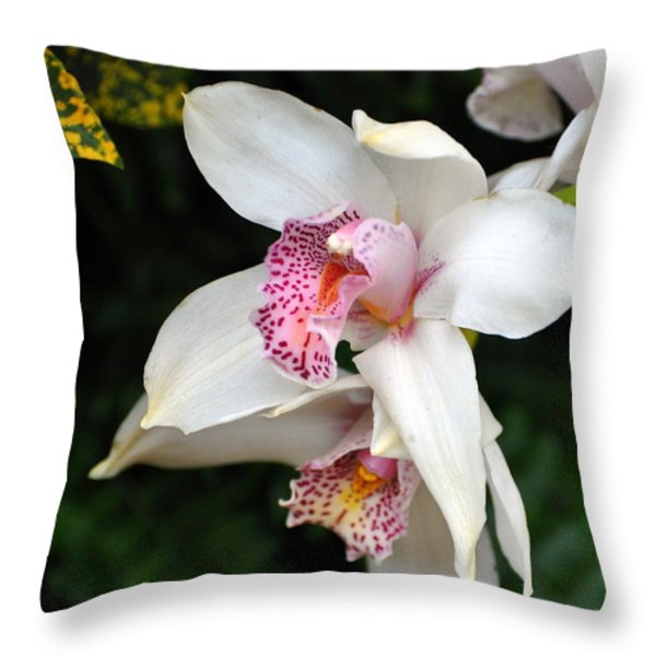 Orchid 29 Throw Pillow by Marty Koch