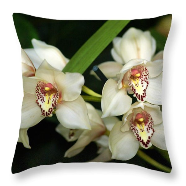 Orchid 3 Throw Pillow by Marty Koch