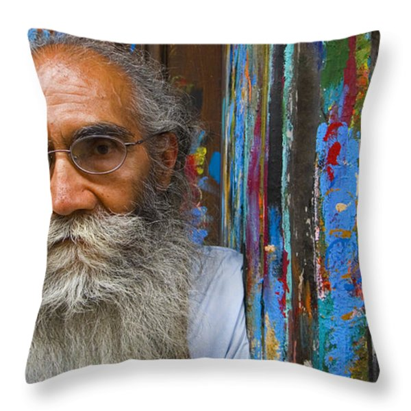 Orizaba Painter Throw Pillow by Skip Hunt