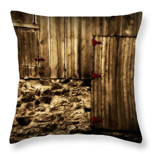 Out Of Place 2 Throw Pillow by Julie Hamilton