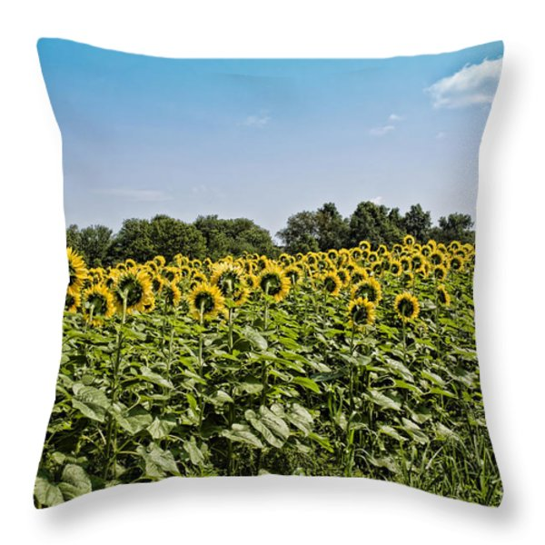 Out of Place Throw Pillow by Edward Sobuta
