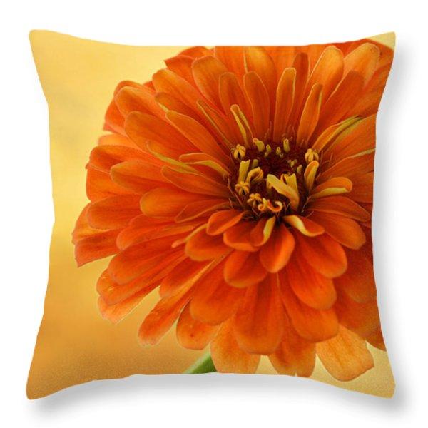 Outrageous Orange Throw Pillow by Sandy Keeton