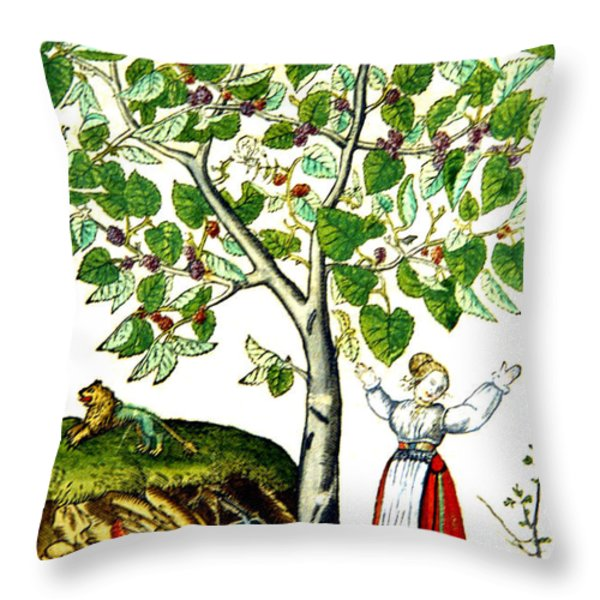 Ovids Pyramus And Thisbe Myth Throw Pillow by Photo Researchers