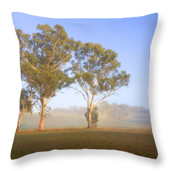 Paddock Sunrise Throw Pillow by Mike  Dawson