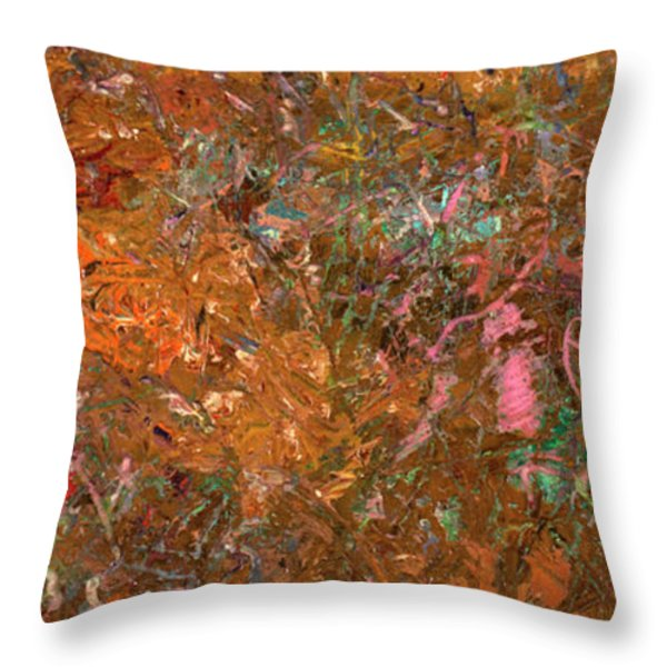 Paint number 19 Throw Pillow by James W Johnson