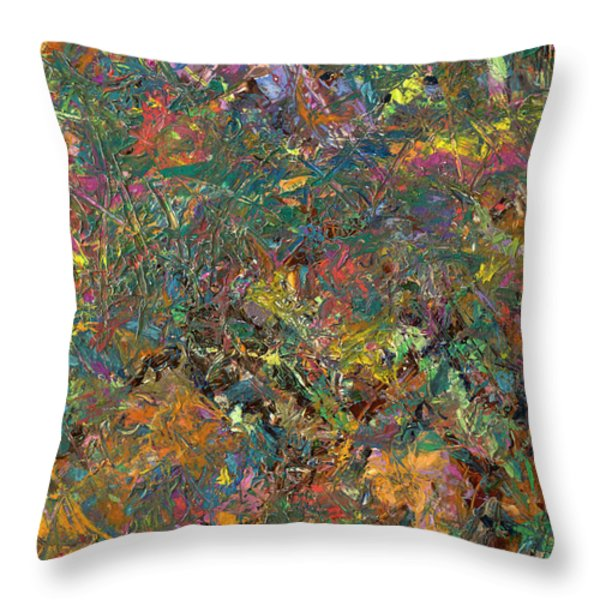 Paint Number 29 Throw Pillow by James W Johnson
