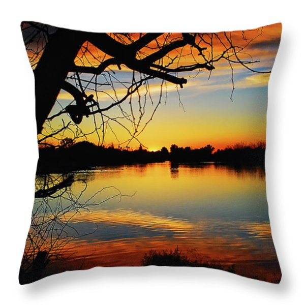 Paint The Sky Throw Pillow by Saija  Lehtonen