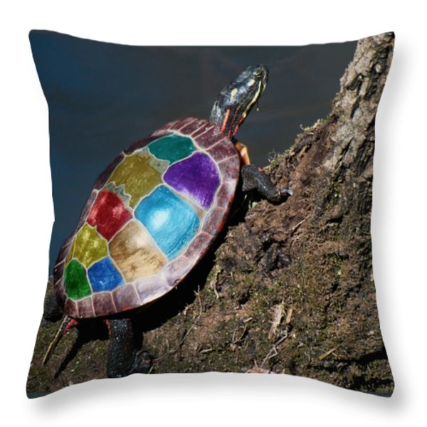 Painted Painted Turtle Throw Pillow by Warren M Gray