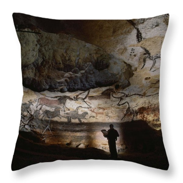 Paleolithic Bulls And Other Animals Throw Pillow by Sisse Brimberg