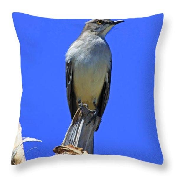 Palm Mocking Bird Throw Pillow by Deborah Benoit