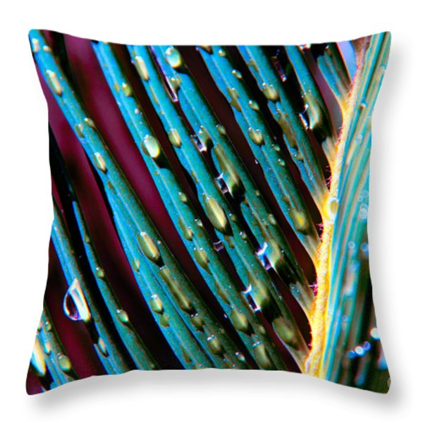 Palms after a Rainy Day Throw Pillow by Mariola Bitner