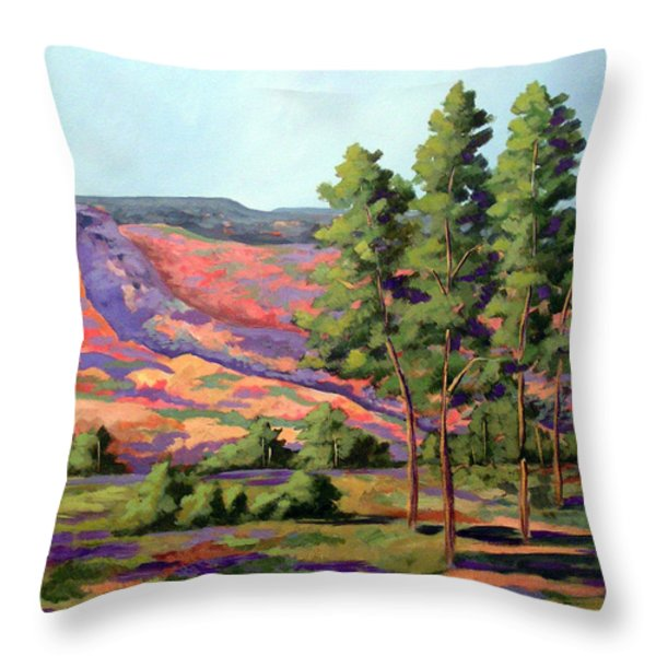 Palo Duro Cottonwood Throw Pillow by Micheal Hammons