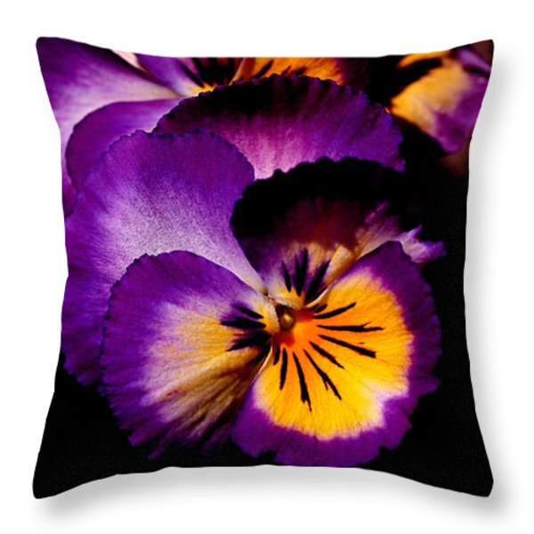 Pansies Throw Pillow by Rona Black