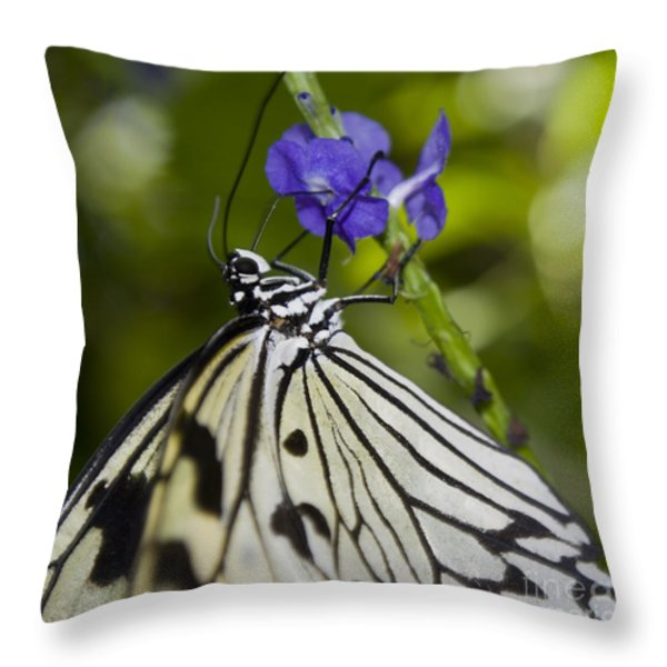 Paper Kite Butterfly Throw Pillow by Heather Applegate