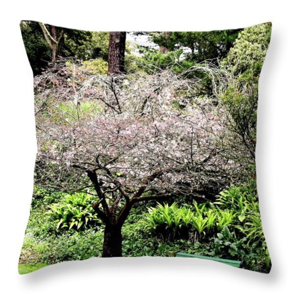 Park Bench at The Old Cherry Blossom Tree . 7D5804 Throw Pillow by Wingsdomain Art and Photography