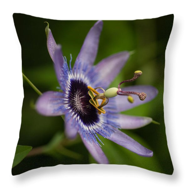 Passiflora Throw Pillow by Mike Reid