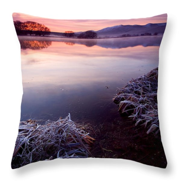 Pastel Dawn Throw Pillow by Mike  Dawson