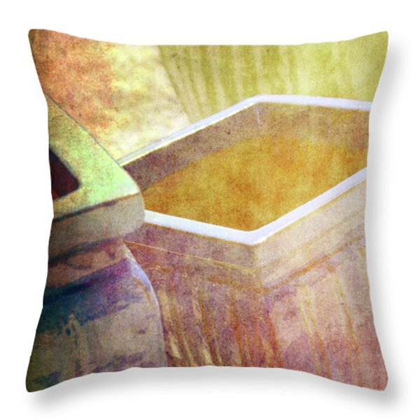 Pastel Pottery Throw Pillow by Susanne Van Hulst