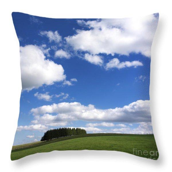 Pasture In Auvergne Throw Pillow by Bernard Jaubert