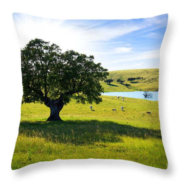Pasturing Cows Throw Pillow by Carlos Caetano