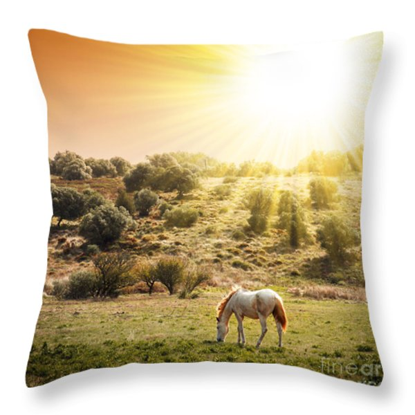 Pasturing Horse Throw Pillow by Carlos Caetano