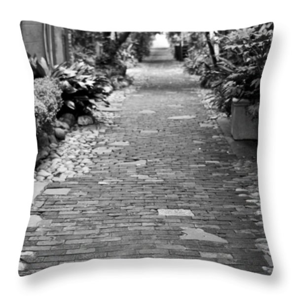 Patchwork Pathway Throw Pillow by Dustin K Ryan