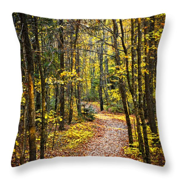 Path In Fall Forest Throw Pillow by Elena Elisseeva