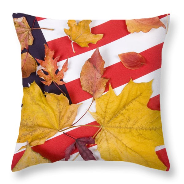 Patriotic Autumn Colors Throw Pillow by James BO  Insogna