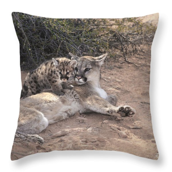 Peaceful Moments Throw Pillow by Sandra Bronstein