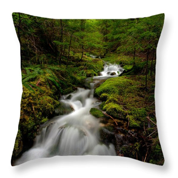 Peaceful Stream Throw Pillow by Mike Reid