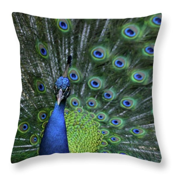 Peacock Throw Pillow by Sabrina L Ryan