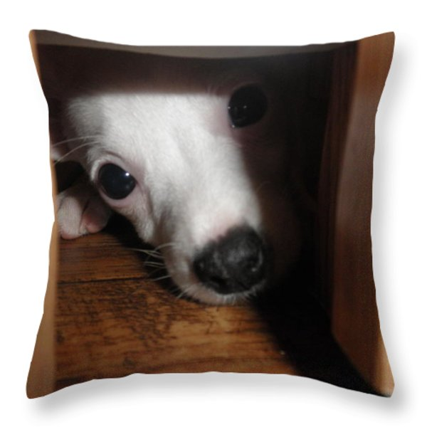 Peek A Boo Throw Pillow by Camille Reichardt
