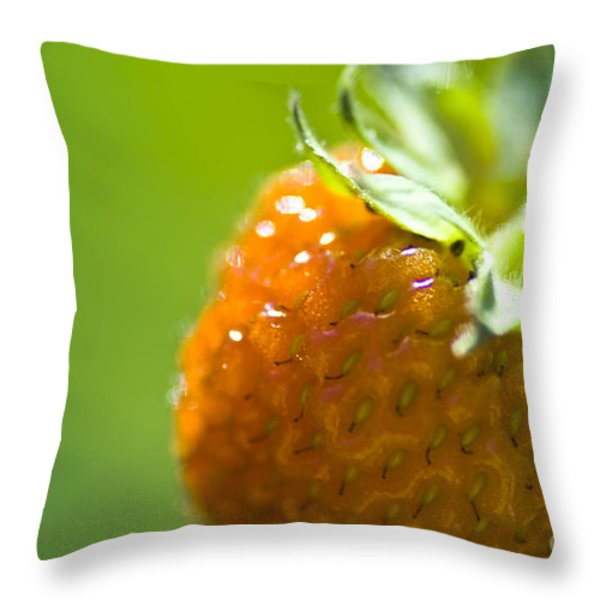 Perfect Fruit Of Summer Throw Pillow by Heiko Koehrer-Wagner