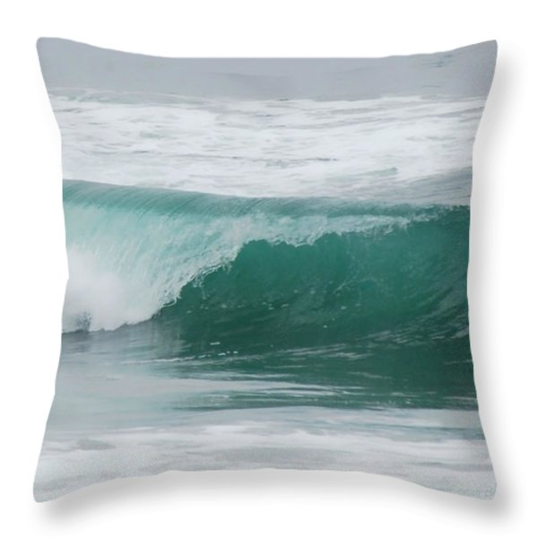 Perfect Wave Throw Pillow by Donna Blackhall