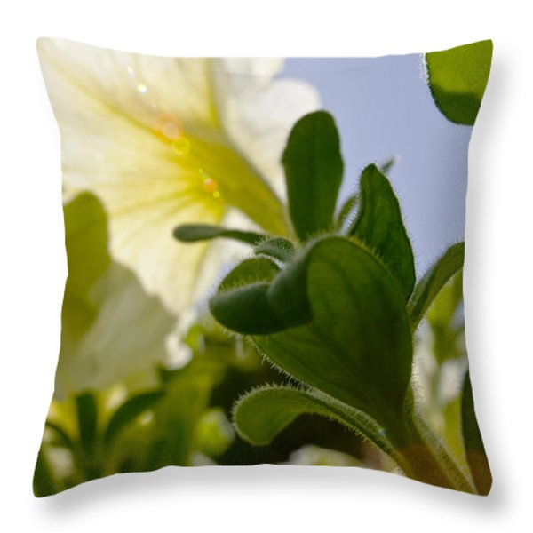 Petunia and Sunflare Throw Pillow by Ray Laskowitz - Printscapes
