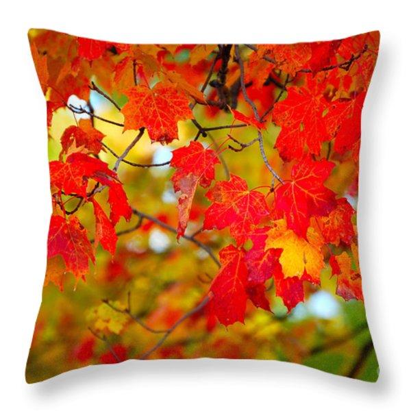 Photo Synthesis Throw Pillow by Diane E Berry