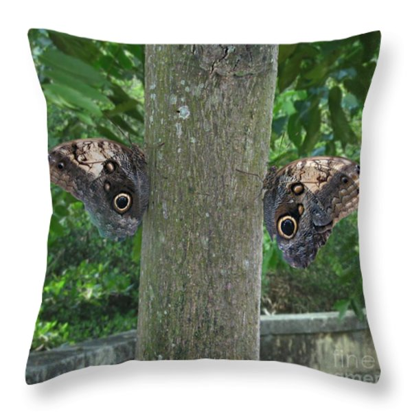 Photography Of Butterfly Symmetry Throw Pillow by Mario  Perez