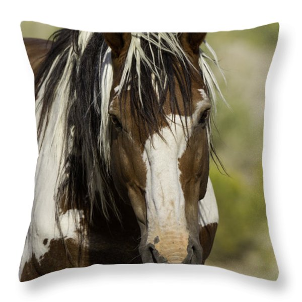 Picasso Comes Close Throw Pillow by Carol Walker