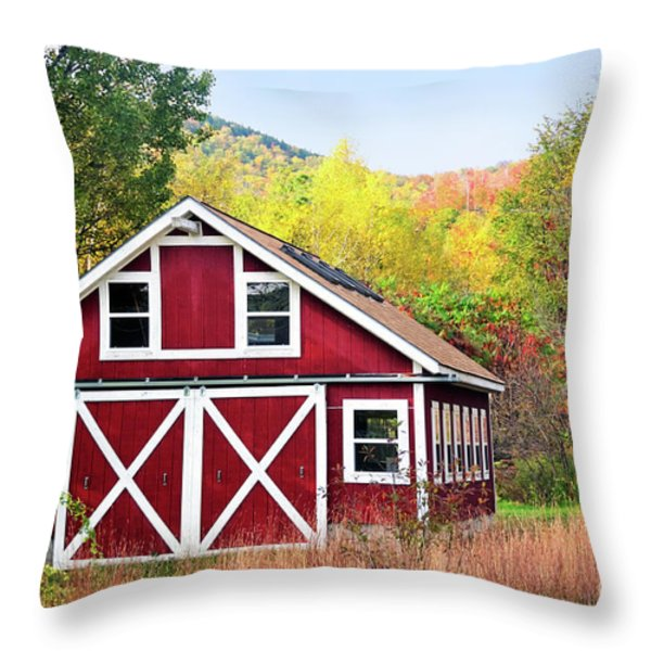 Picturesque Throw Pillow by Betty LaRue