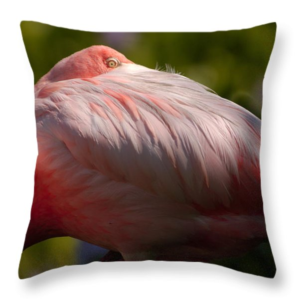 Pink Throw Pillow by Sebastian Musial