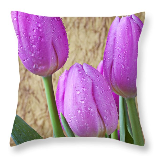 Pink Tulips Throw Pillow by Garry Gay
