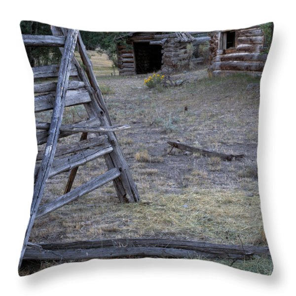 Pioneer Cabins Throw Pillow by Leland D Howard