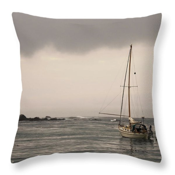 Play Misty For Me Throw Pillow by Donna Blackhall